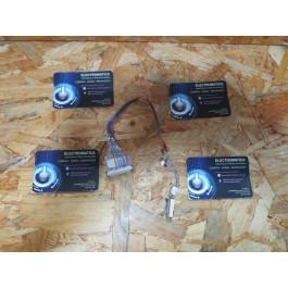 Flex de LCD Ergo Preceptor 5 G200B Recondicionado Ref: DDEW1GLC004