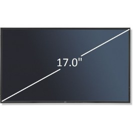"Display 17.0"" Optronics Recondicionado"